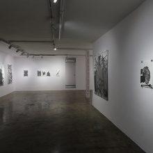 "Sara Abbasian, ""White Rose"" series, installation view, 2019"