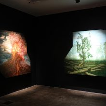 "Amirhossein Bayani, ""Fidelity; Names of Politics"" series, installation image, 2019"