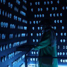 "Safaeddin Emami, ""Black Hole""(detail), multimedia installation at Pasio, 2019"