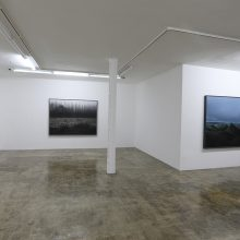 """Mehrdad Afsari, from """"Forty: A Treatise on Terrene Traverse"""" series, installation view, 2018"""