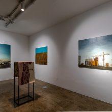 "Azadeh Barbad, ""Habitat"", installation view, 2019"