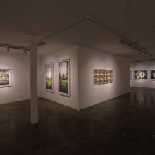 """Phototrope"" series, installation view"