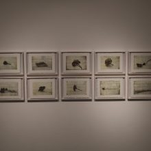 """""""Expedition No.3"""" series, installation view"""