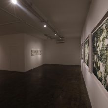 """Sundays"" series, installation view"