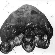 "Sara Abbasian, ""Cosmic Turtle #01"", from ""Imperishable Gravity"" series, pencil on cardboard, Diasec, 104 x 144 cm, unique edition, 2016"