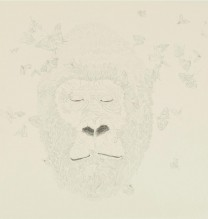 "Nahid Behboodian, from ""The Last Monkey"" series, pencil on cardboard, 22.5 x 22.5 cm, 2014"