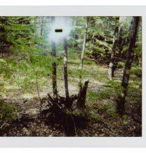 "Gohar Dashti, untitled, from ""Alien"" series, polaroid photography, instant color film, unique edition, 4.6 x 6.2 cm, 2017"