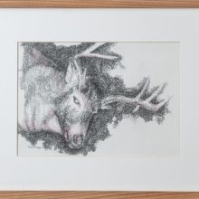 """Zahra Ghyasi, """"Deer"""", from """"Arithmomania"""" series, pencil on paper, 33 x 41 cm, 2019"""