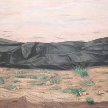 Alireza Rajabi, untitled, acrylic on canvas, 91.5 x 141 cm, 2018