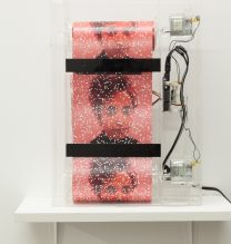 """Arya Tabandehpoor, untitled, from """"Flesh"""" series, (rolled photograph, glass cube, electric motor, sensors, electric circuits, power adaptor and wiring in plexiglass boxes), 28 x 40 x 10 cm, unique edition of 7, 2017"""