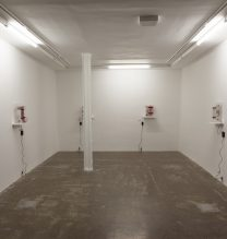 """Arya Tabandehpoor, from """"Flesh"""" series, installation view, 2017"""