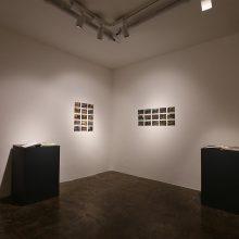 "Alireza Fani, ""Along Modares"", installation view, 2019"