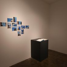 "Alireza Fani, ""Twelve Blue Squares"", installation view, 2019"