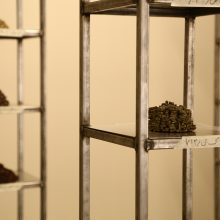"""Mahsa Aleph, """"Corpse"""" (Detail), from """"The Container made of the Contained"""" series, installation made of thirty-five thousand date kernels in 4 metal columns consists of 10 shelves, processed by turmeric, mold, oil, and soot, 2019"""