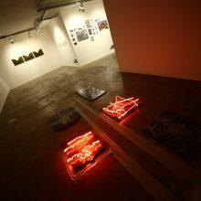 """Amir Farsijani, """"Necropolis"""" Series, Installation View, 2017"""
