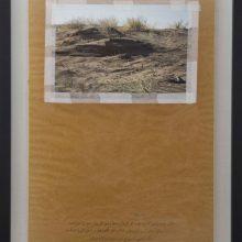 "Mojtaba Amini, ""Maqak (lit. Pit)"", collage, 78.5 x 57 cm, 2018"
