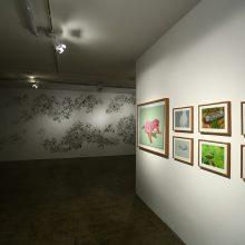 Alireza Rajabi, installation view, 2018