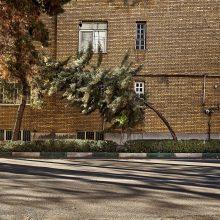 "Alireza Fani, untitled, from ""In Tehran's Solitude"" series, archival print, 10 x 15 cm, 2016"