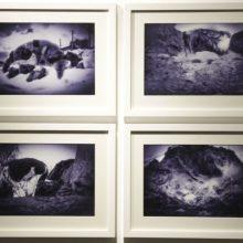 "Nazanin Mirzabeigi, ""Episode 01: Prolongation"" group exhibition, installation view, 2016"