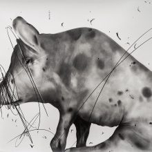"""Sara Abbasian, untitled, from """"Cluster 5"""" series, pencil on paper, 70 x 100 cm, 2021"""