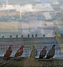 "Mehrdad Afsari, ""America: Suspended Land"" series, digital photography, inkjet print on archival paper, under diasec, 130 x 175 cm, edition of 5 + AP, 2007"