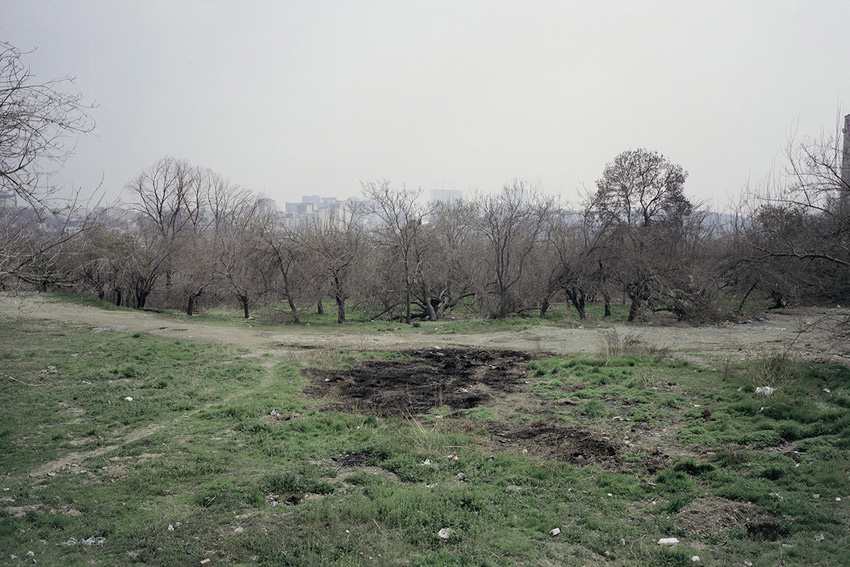 14.	Shahrak e Gharb Forest Park, Tehran, 2015, Analog Photography, Medium Format, Chemical Print on Photo Paper, 20×30(cm), 5 Editions + 2 AP