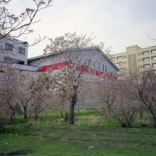 8.	Iran zamin, Tehran, 2015, Analog Photography, Medium Format, Chemical Print on Photo Paper, 74×111(cm), 5 Editions + 2 AP