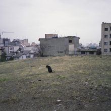 9.	Velenjak, Tehran, 2015, Analog Photography, Medium Format, Chemical Print on Photo Paper, 20×30(cm), 5 Editions + 2 AP