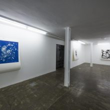 "Gohar Dashti, from ""Still Life"" series, installation view, 2017"