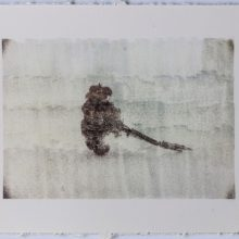 "Sasan Abri, untitled, from ""Expedition NO.3"" series, image transferred on paper, 22 x 29 cm, unique edition, 2019"